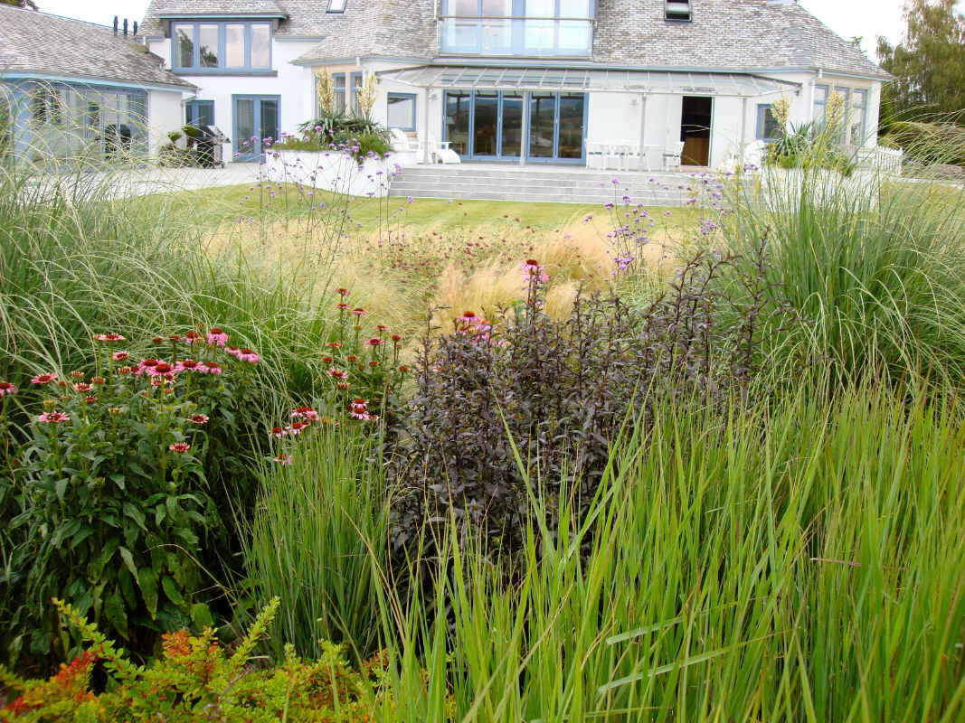 Roger Webster Garden Design - Estuary