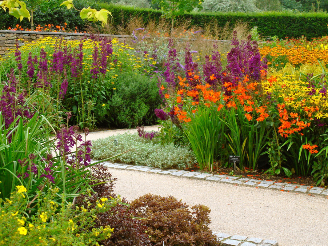 Roger Webster Garden Design - Hot